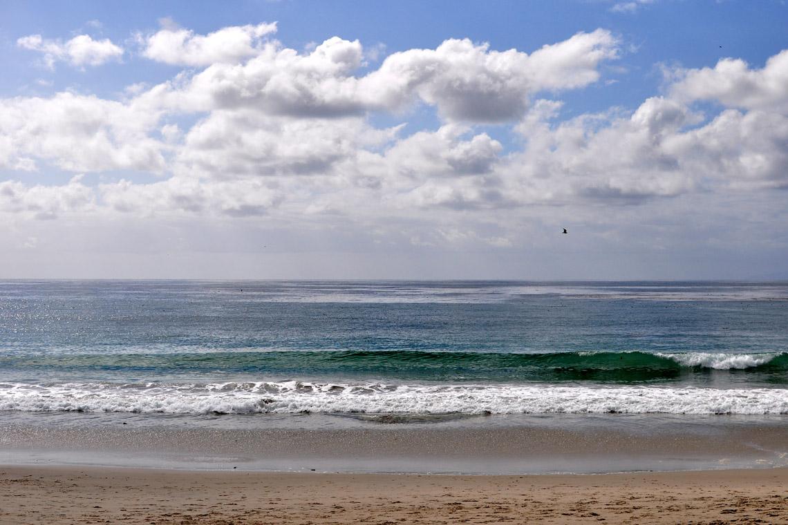 Urth Caffe Laguna Beach Address