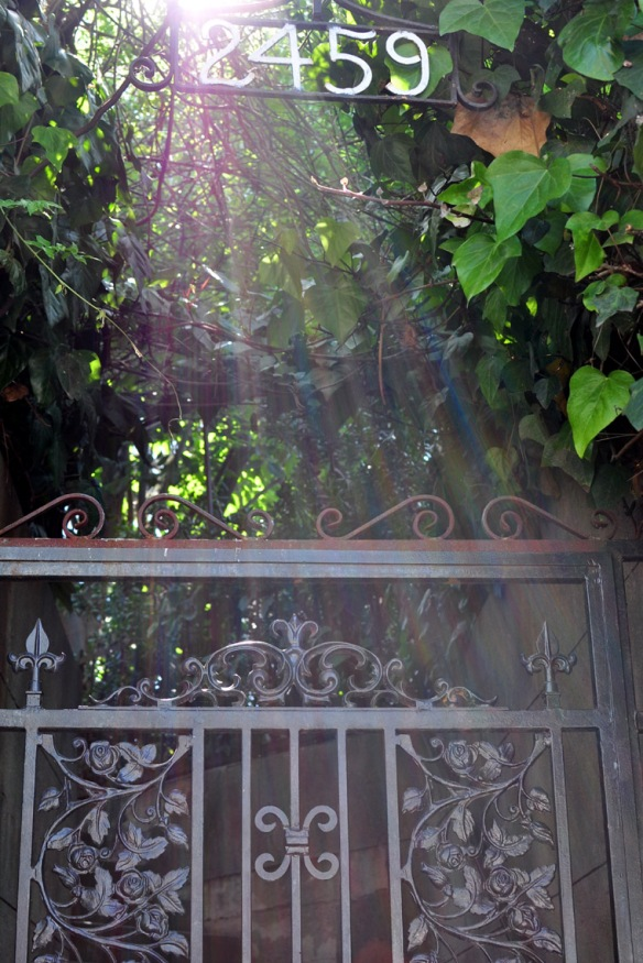 A sunlit wrought iron gate