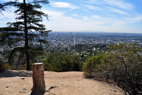 Stunning LA from Griffith Park