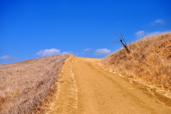 Eagle Rock Trail in Topanga State Park