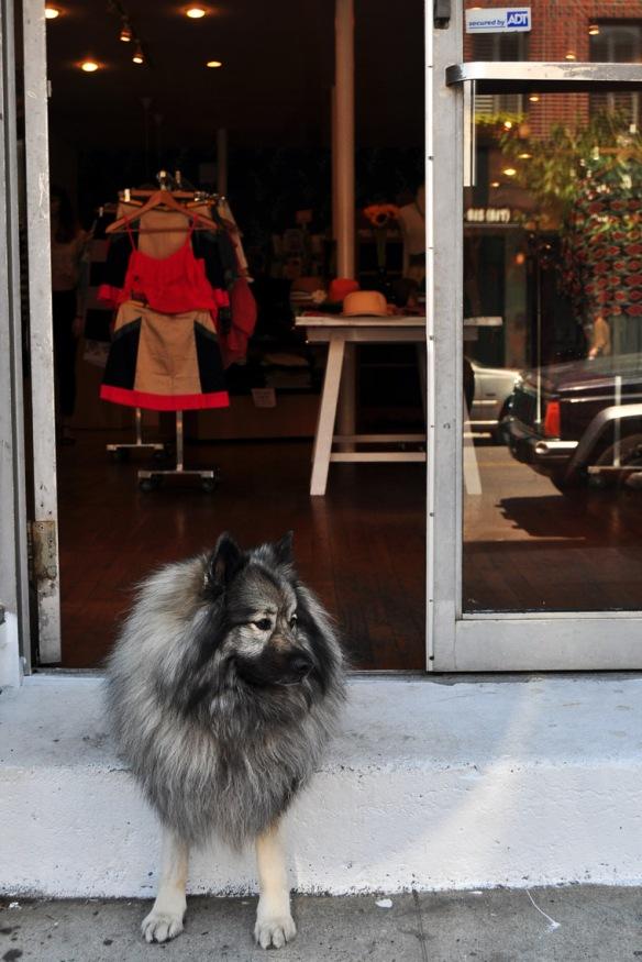 Guard Dog, May 2012