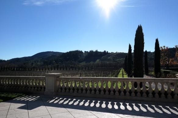 Vineyards at Ferrari-Carano