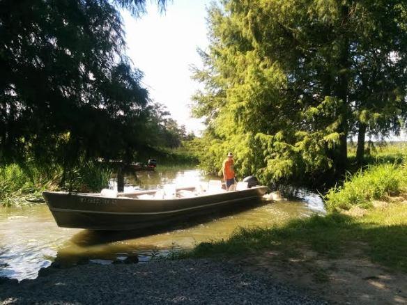 Cajun Country Swamp Tour